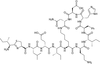 Chemical structure of bacitracin A.