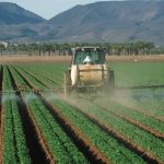 Harmful Impact of Pesticides on Human Health and Environment
