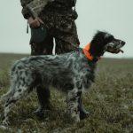 Hunting Clothing Basics for New Hunters